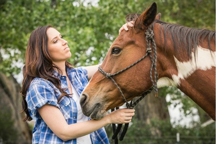 Фото №1 - Как лошади понимают человеческие эмоции