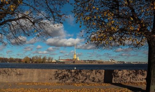 Фото №1 - Социологи выяснили, сколько россиян страдают от осенней хандры