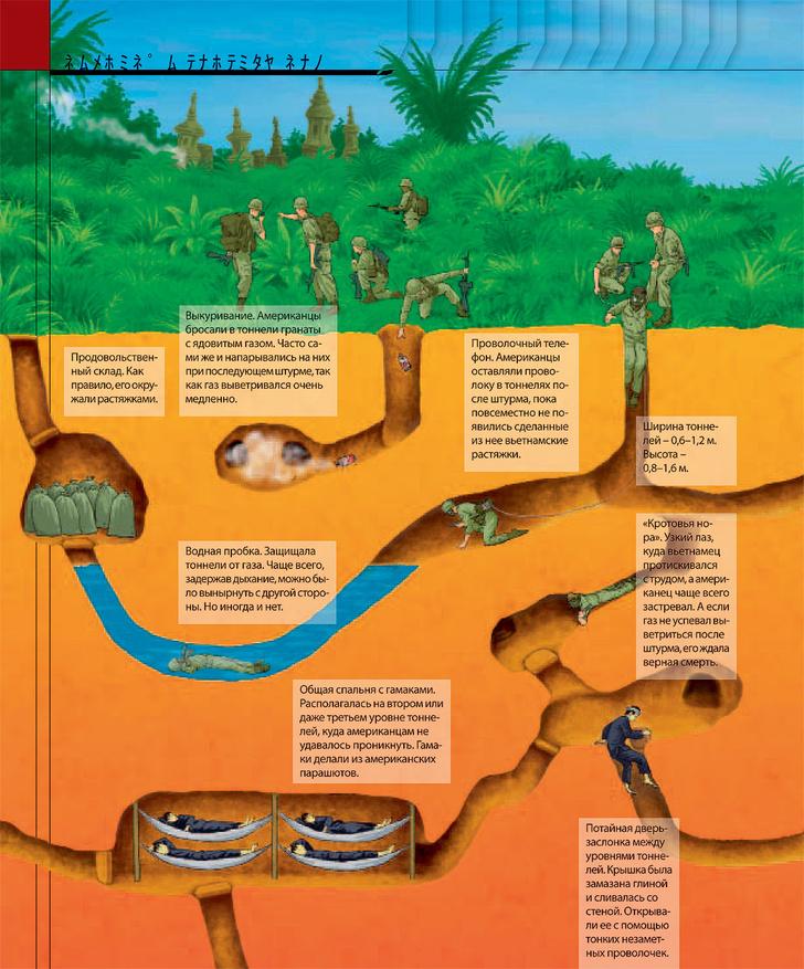 Фото №2 - Как были устроены подземные города вьетнамских партизан
