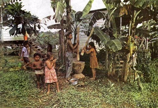 Фото №1 - Дом индейца
