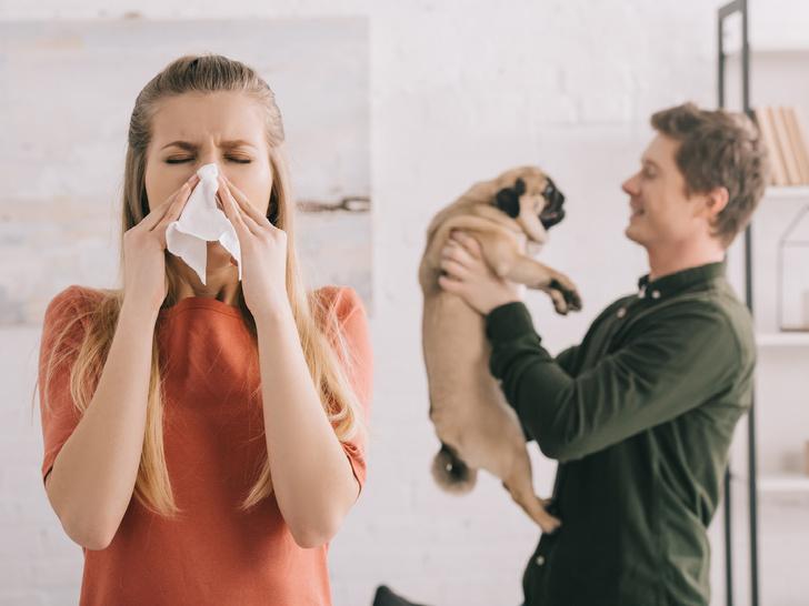 Фото №1 - Отдать нельзя оставить: что делать, если у вас аллергия на домашнее животное