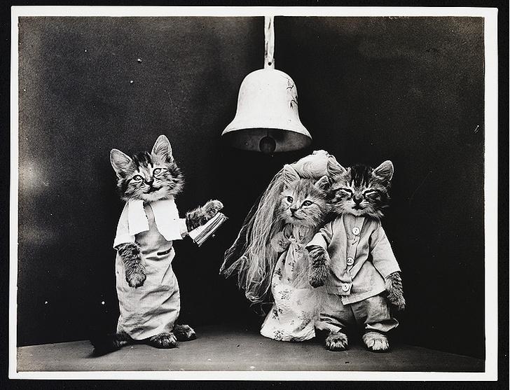 Фото №4 - Живые куклы