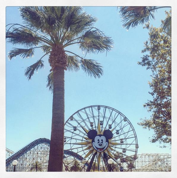 Фото №17 - Звездный Инстаграм: Вселенная Disney