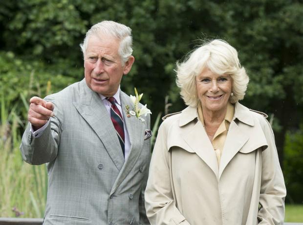 Фото №1 - Единственная вещь, которая не нравится Камилле в браке с Чарльзом