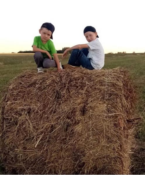 Фото №9 - Детский фотоконкурс «Готовимся к осени»: голосуем за лучшие кадры