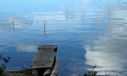 Фото №1 - Купаться в водоемах Ленобласти запрещено