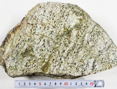 Фото №1 - В Японии обнаружили древнейший камень