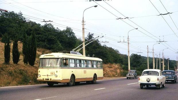 Фото №8 - 8 неожиданных фактов о самом рогатом виде транспорта