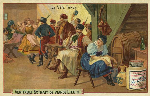 Фото №8 - 10 прославленных венгров, которых стыдно не знать