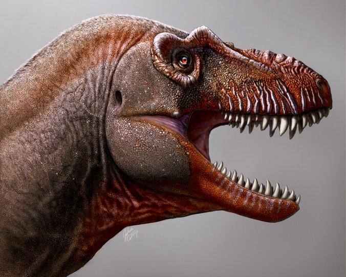 Фото №1 - Новый вид тираннозавра получил название «Жнец смерти»