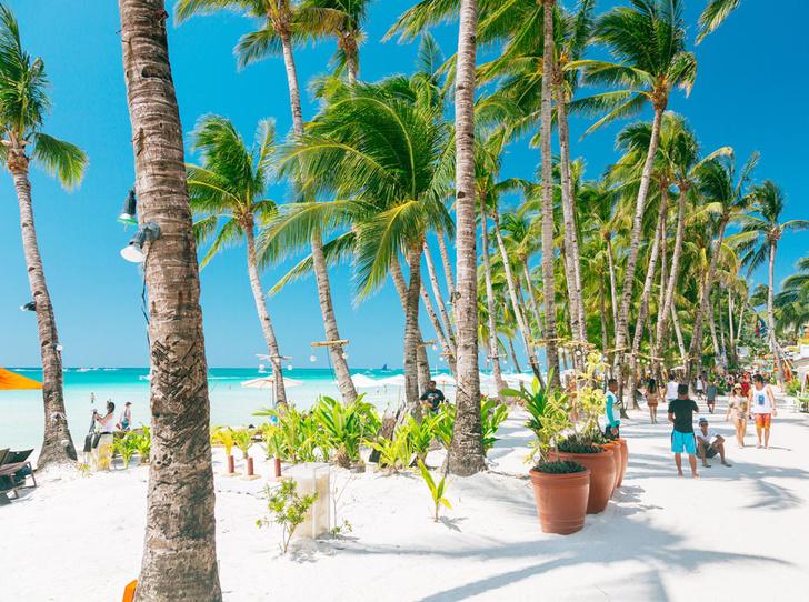 Фото №5 - Из зимы в лето: 6 пляжей, на которых можно встретить Новый год