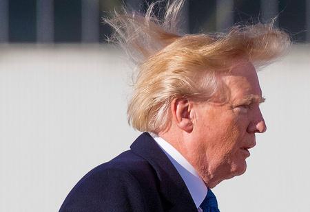 Что было не так с волосами Трампа