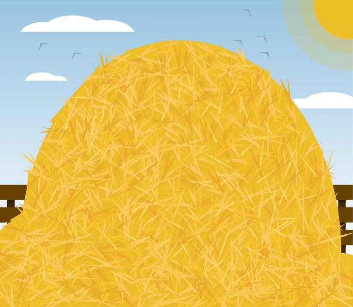 Фото №1 - Найди иголку в стоге сена: отличная головоломка для встряски мозга