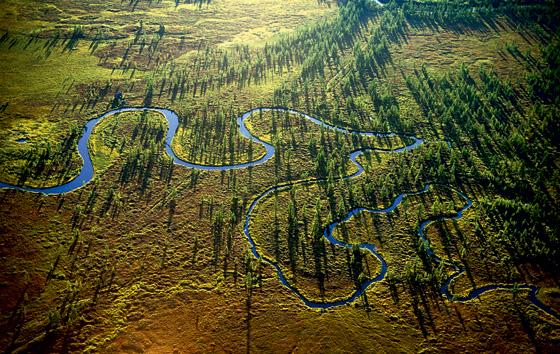 Фото №8 - Горячее сердце Камчатки