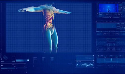 Фото №1 - Удар по почкам. В Калифорнийском университете установили, что коронавирус поражает не только лёгкие, мозг и нервную систему