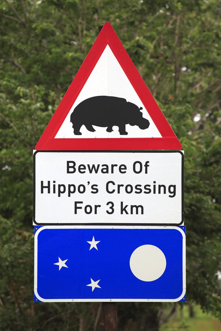 Фото №6 - Таинственные символы: какие дорожные знаки используют в разных странах мира и почему