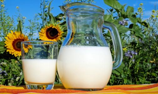 Фото №1 - Эксперты оценили интернет-советы, как проверить свежесть мяса и качество «молочки»