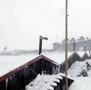 Фото №1 - ЮАР занесло снегом