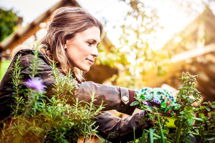 Фото №1 - Врачи назвали садоводство таким же полезным, как плавание