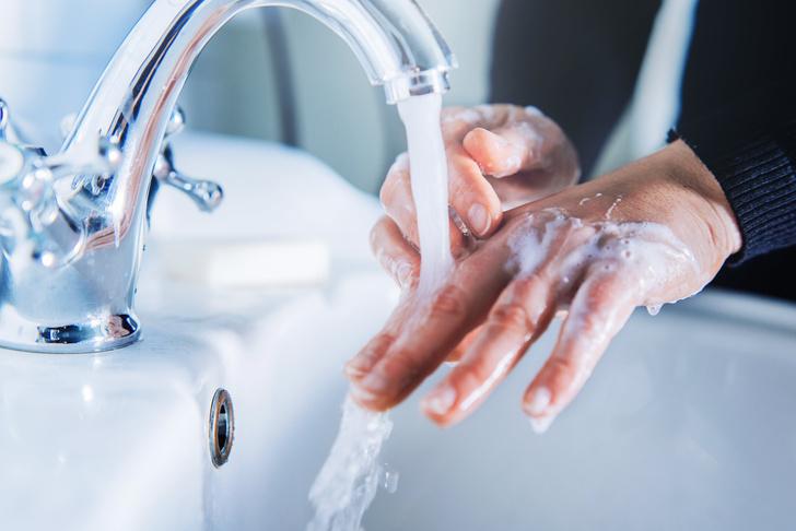 Фото №1 - Доктор Мясников высказался против антибактериального мыла