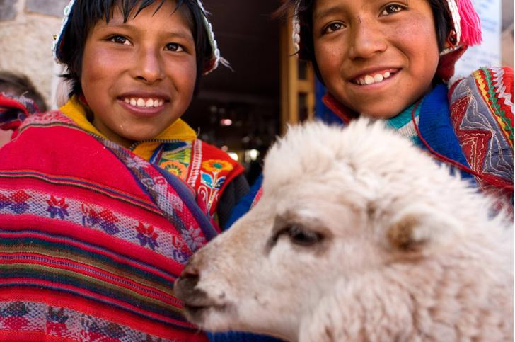 Фото №1 - Генетики рассказали о происхождении инков