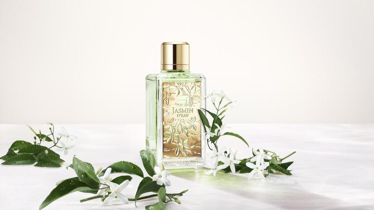 Фото №1 - Мои прекрасные жасмин и роза: +2 парфюмерные новинки Lancôme, которые поднимут вам настроение