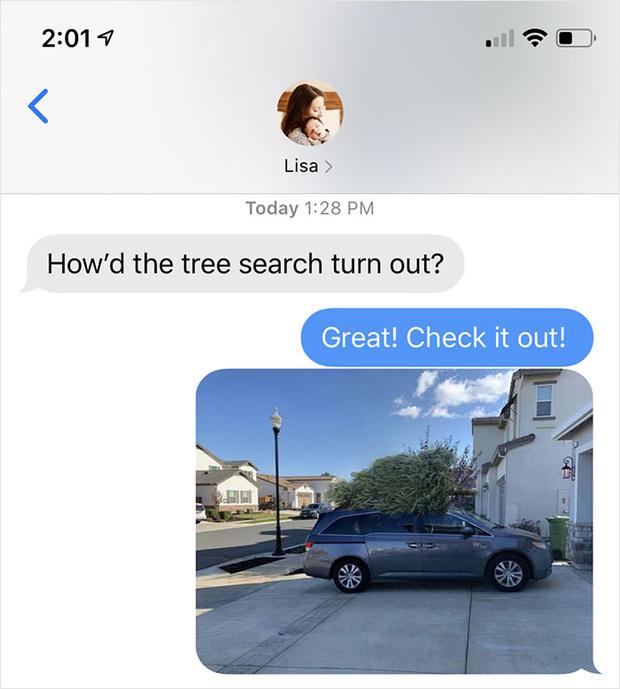 Фото №2 - Муж поехал покупать елку и потроллил жену фотографиями