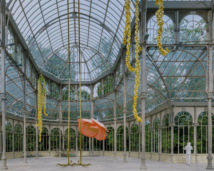Фото №6 - Язык цветов: инсталляция в Хрустальном дворце в Мадриде