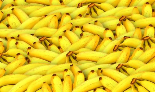 Фото №1 - В Петербург вместе с бананами из Эквадора приехал переносчик холеры