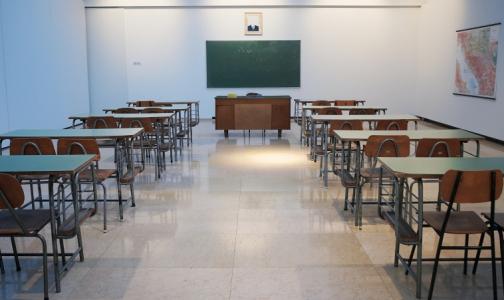 Фото №1 - В ожидании первого звонка. Как петербургских школьников будут защищать от заражения коронавирусом