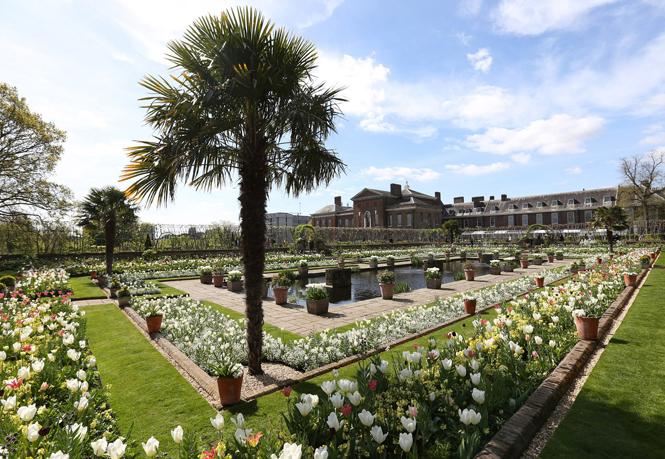 Фото №1 - Сад памяти Дианы: самая вдохновляющая причина попасть в Лондон