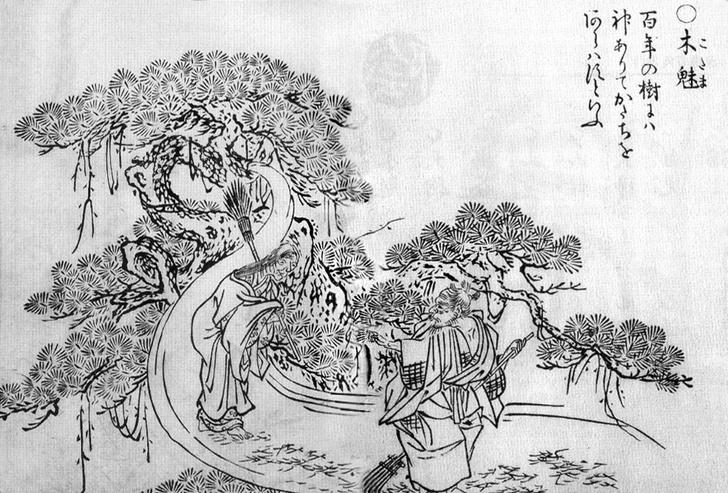 Фото №6 - Домовые в бане и лисы-оборотни: что общего у японских призраков и леших из русских сказок