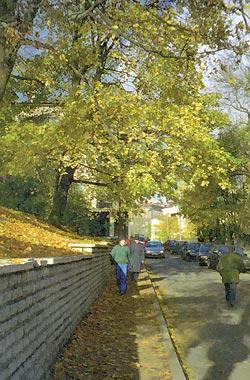 Фото №2 - Tallinn с двумя «Н»