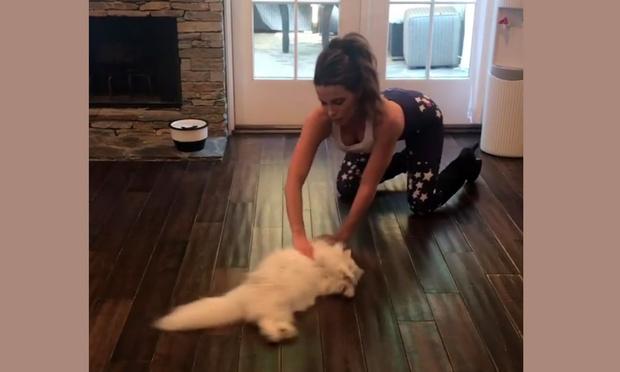 Фото №1 - Кейт Бекинсейл моет пол котом (видео)
