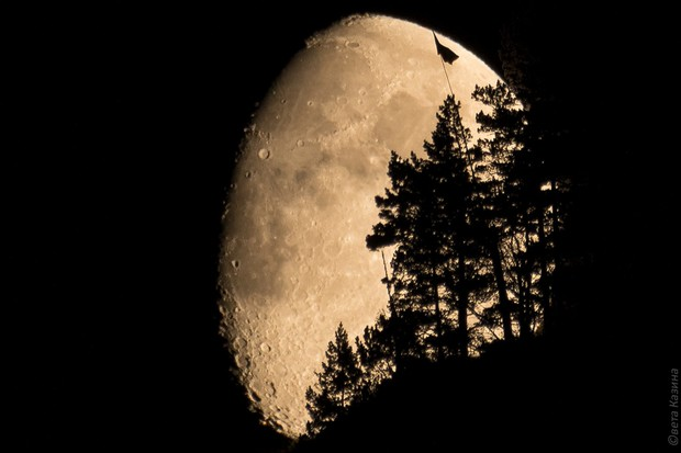 Фото №1 - Трамп подписал указ, согласно которому Луна принадлежит США