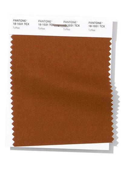 PANTONE 18-1031 Toffee