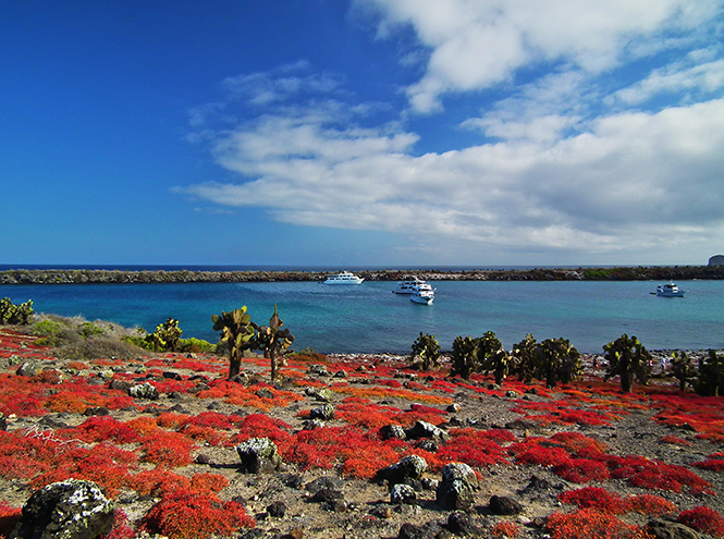 Фото №1 - Названы самые привлекательные для туристов острова