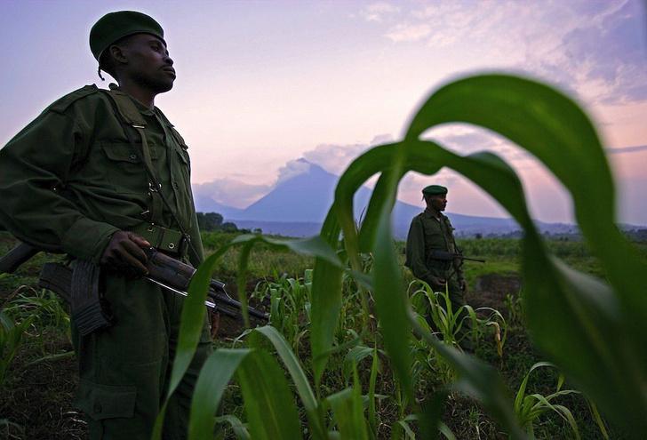 Фото №22 - Невидимые войны: 5 конфликтов ХХ века, унесших миллионы жизней