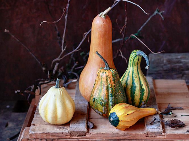 Фото №6 - Королева Хэллоуина: 7 интересных фактов и 3 полезных рецепта из тыквы