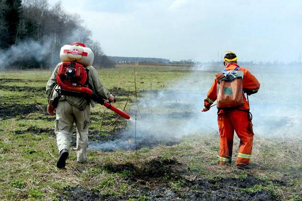 Фото №4 - Мокрыми штанами по лесному пожару