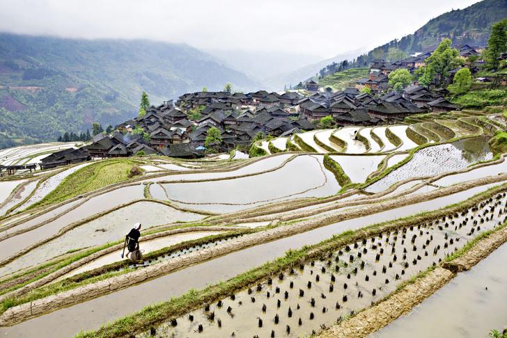 Фото №1 - Китайская шкатулка