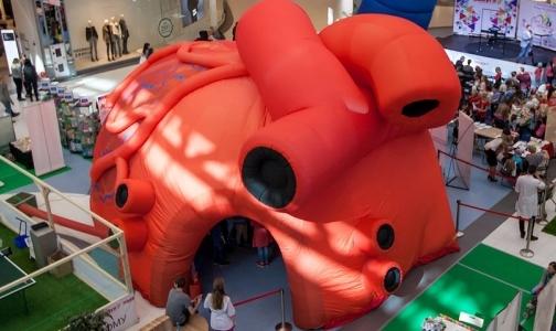 Фото №1 - В Московском парке Победы установят 6-метровое сердце