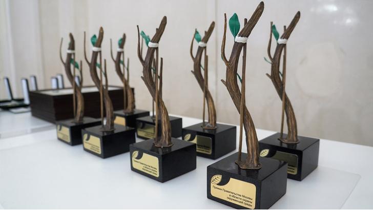 Фото №1 - В столице объявлены конкурсы на соискание премии в области охраны окружающей среды и за лучший проект комплексного благоустройства