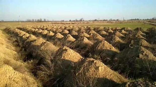 Фото №1 - Власти украинского города выкопали 600 могил, чтобы убедить местных жителей соблюдать карантин (видео)