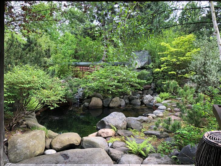 Фото №9 - ELLE DECORATION в саду у дизайнера Ирины Глик