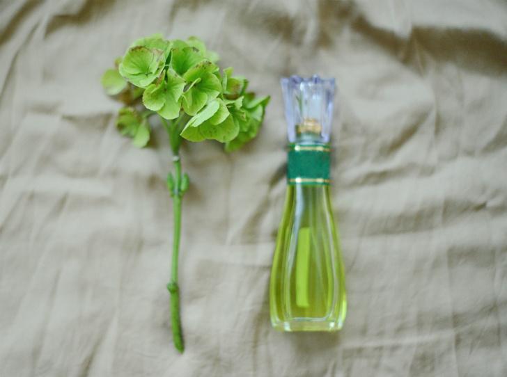 Фото №14 - Как носить парфюм летом