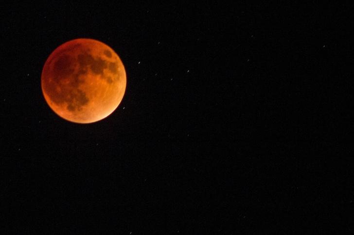 Фото №1 - Не забудь сегодня ночью посмотреть лунное затмение