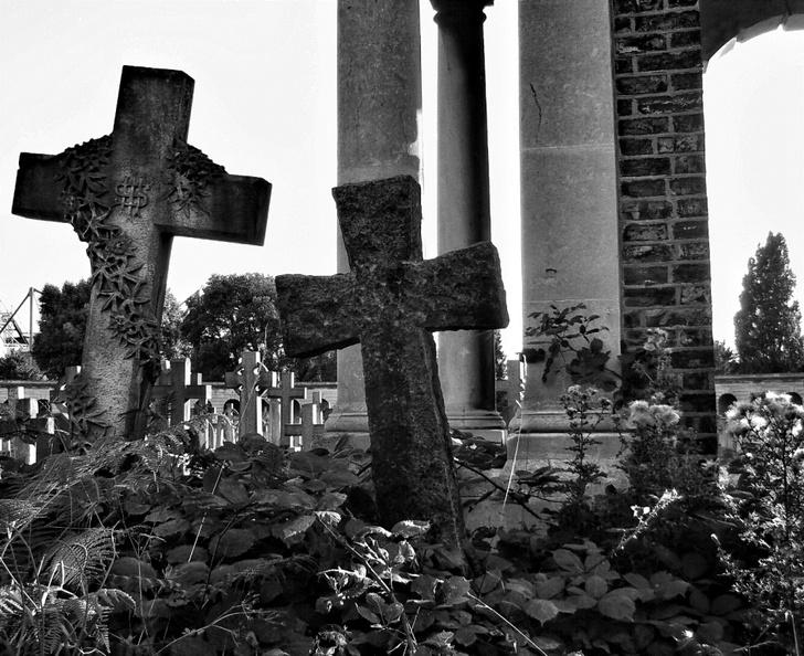 Фото №6 - Пикники на кладбище, печенье из мышьяка и другие чудачества Викторианской эпохи