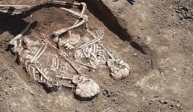 Фото №1 - На Кубани обнаружено захоронение конца 3-го тысячелетия до н. э.