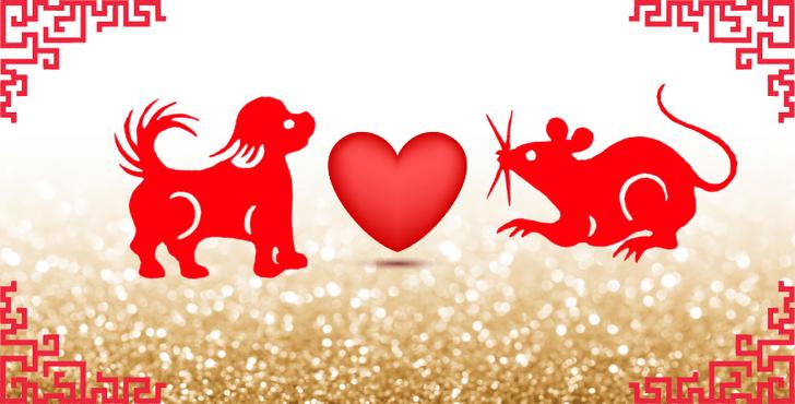 Фото №7 - Любовь по китайскому гороскопу: с кем тебе суждено быть вместе? 😍